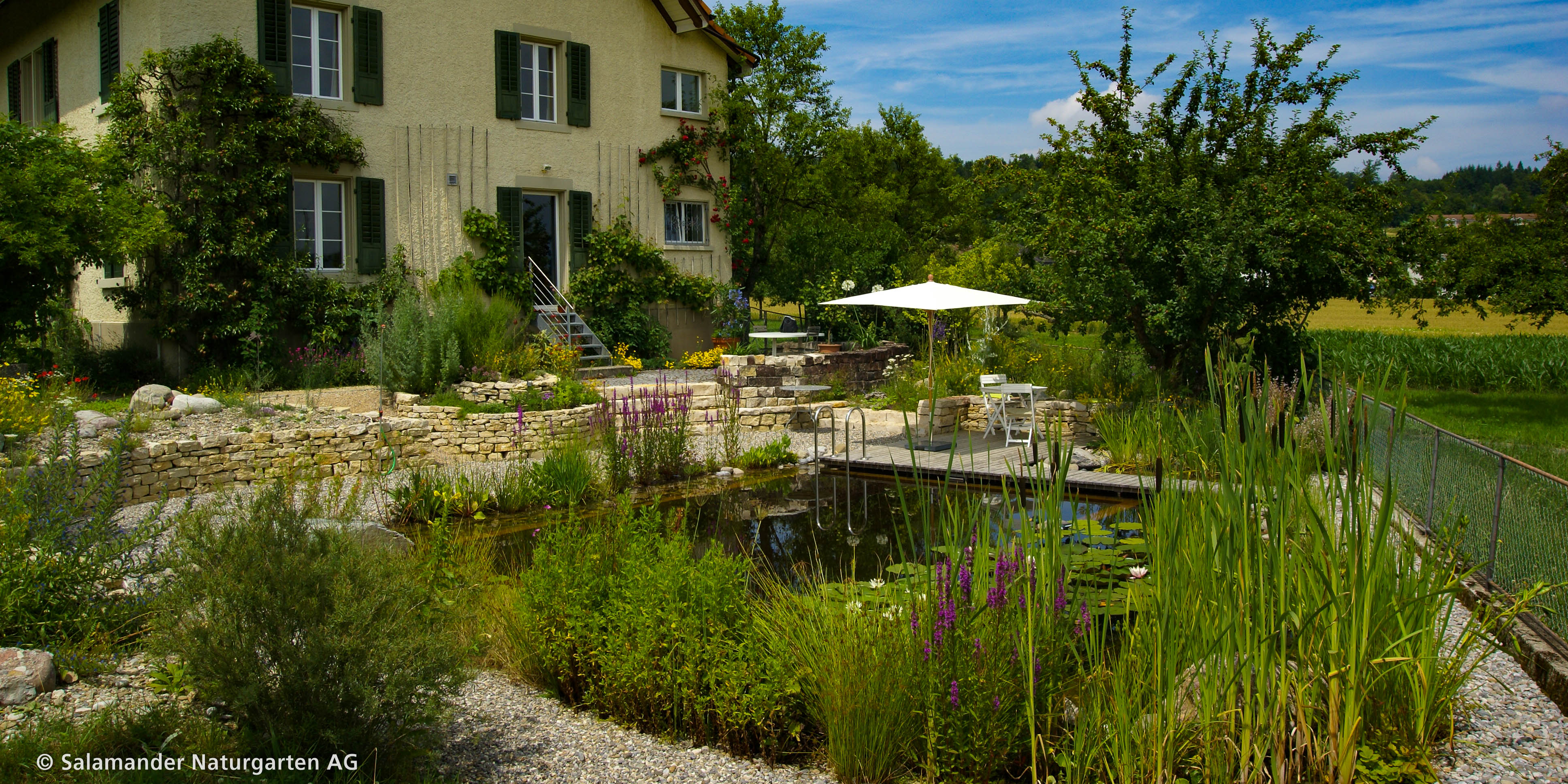 ihr gartenbau spezialist salamander naturgarten ag salamander naturgarten ag. Black Bedroom Furniture Sets. Home Design Ideas