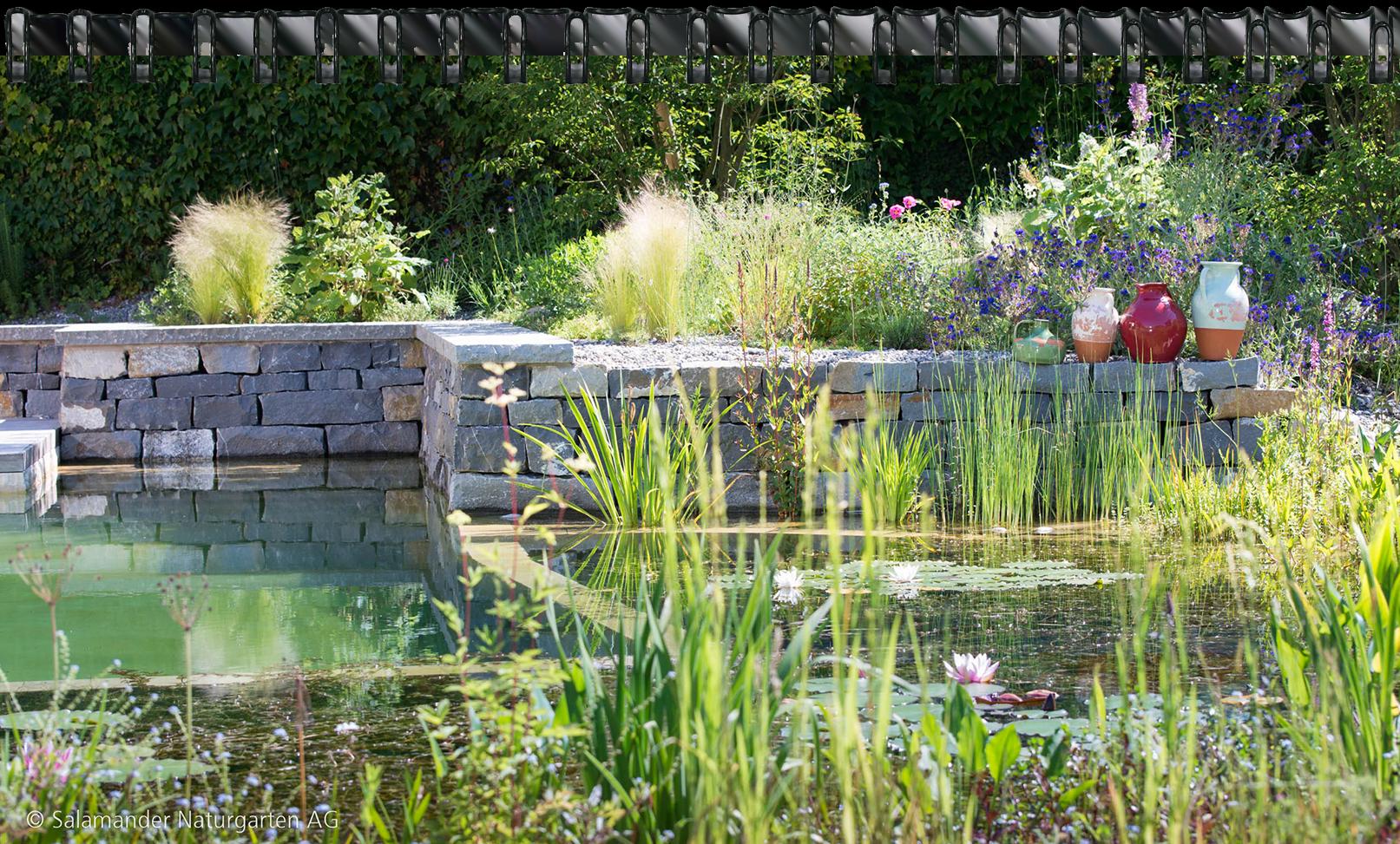 Ihr gartenbau spezialist salamander naturgarten ag for Garten schwimmteich