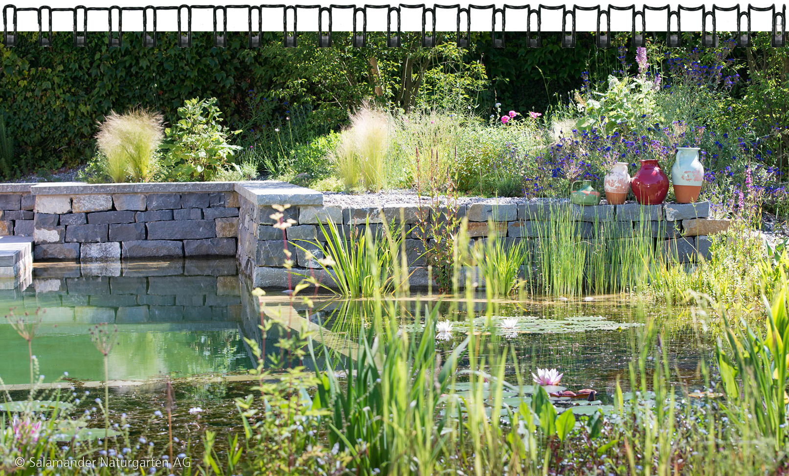 ihr gartenbau spezialist salamander naturgarten ag. Black Bedroom Furniture Sets. Home Design Ideas