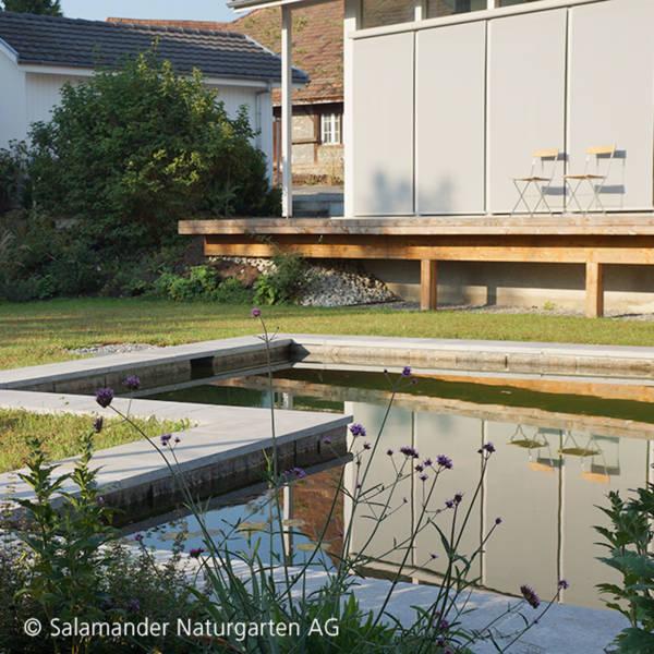 Naturpool Schwimmteich und Biopool in einem