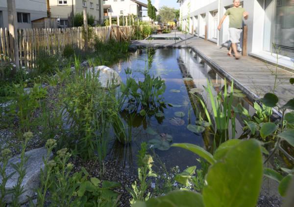 Salamander Showgarten Schwimmteich selber bauen Eigenbau Workshop