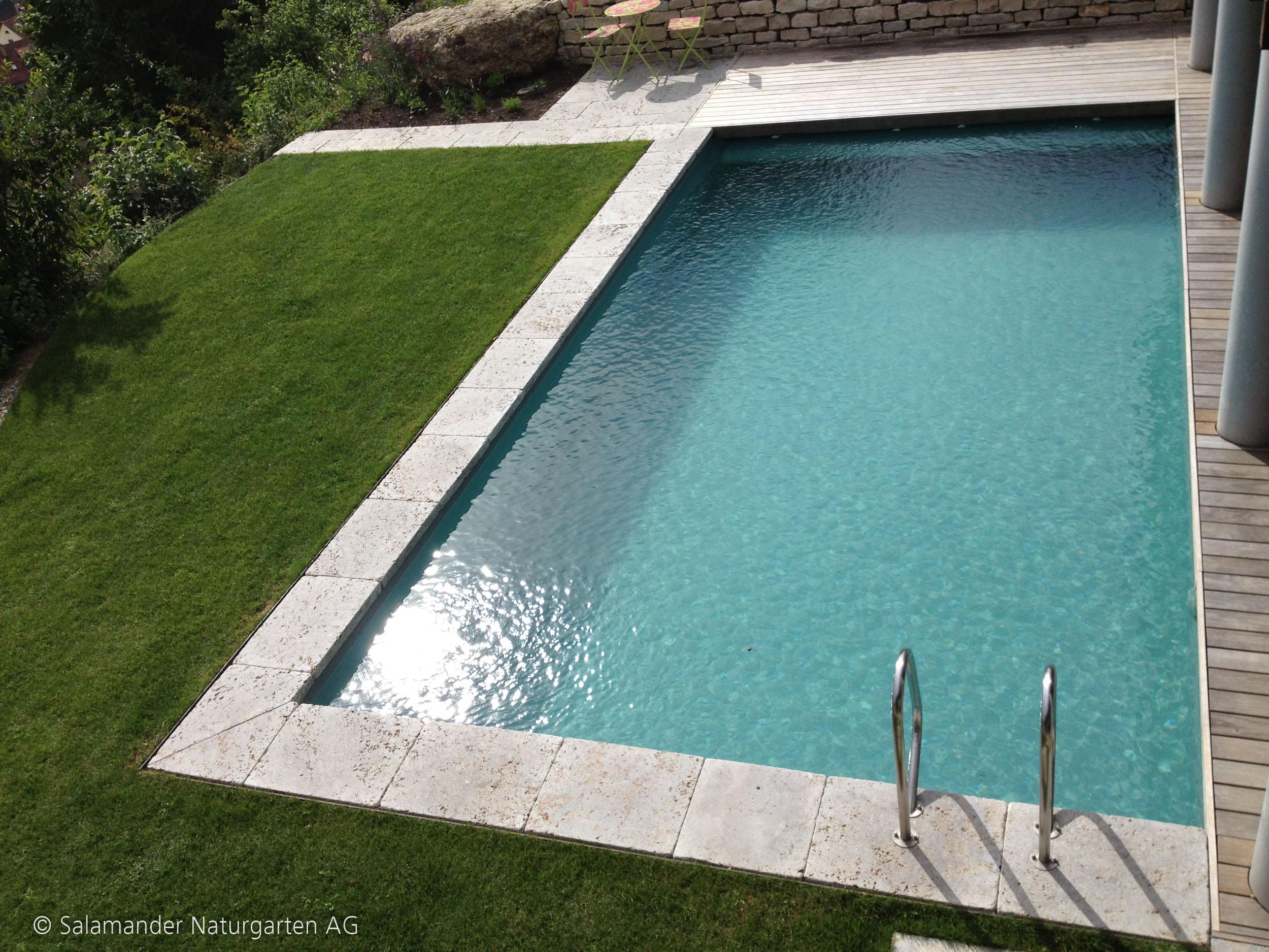 welches ist der perfekte schwimmteich f r mich einf hrung salamander naturgarten ag. Black Bedroom Furniture Sets. Home Design Ideas