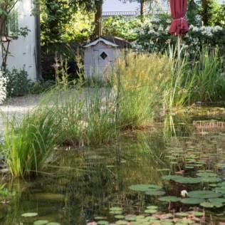 Die naturnahe Ufergestaltung überzeug nicht nur ästhetisch, sondern ist auch ökologisch wertvoll.