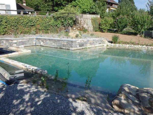 Bauprozess Schwimmteich