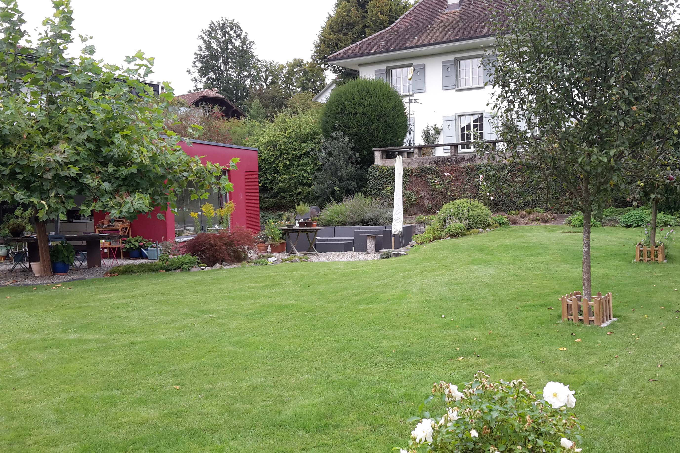 Hausgarten salamander naturgarten ag for Garten umbau