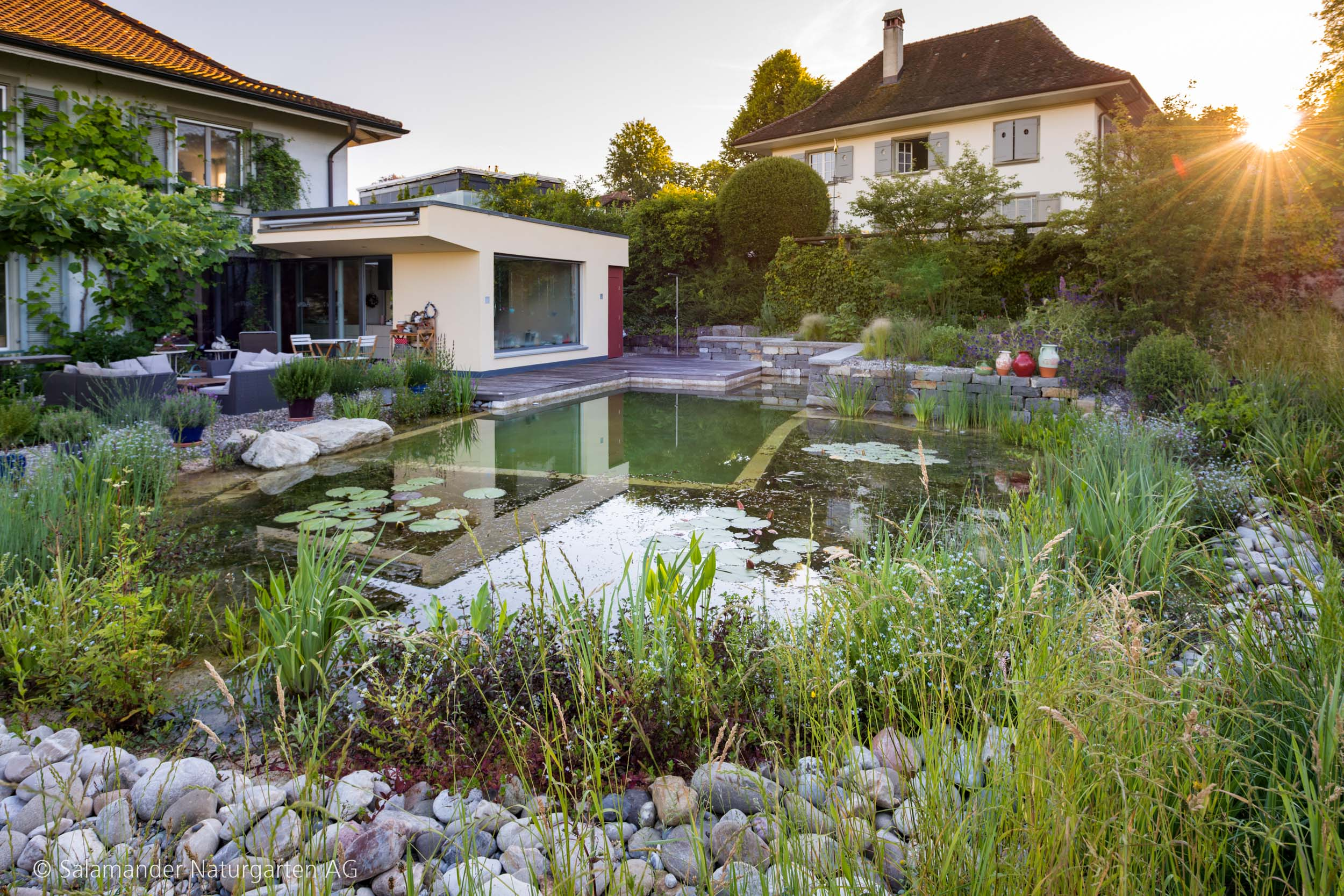 darum ist jeder schwimmteich garten nat rlich individuell salamander naturgarten ag. Black Bedroom Furniture Sets. Home Design Ideas