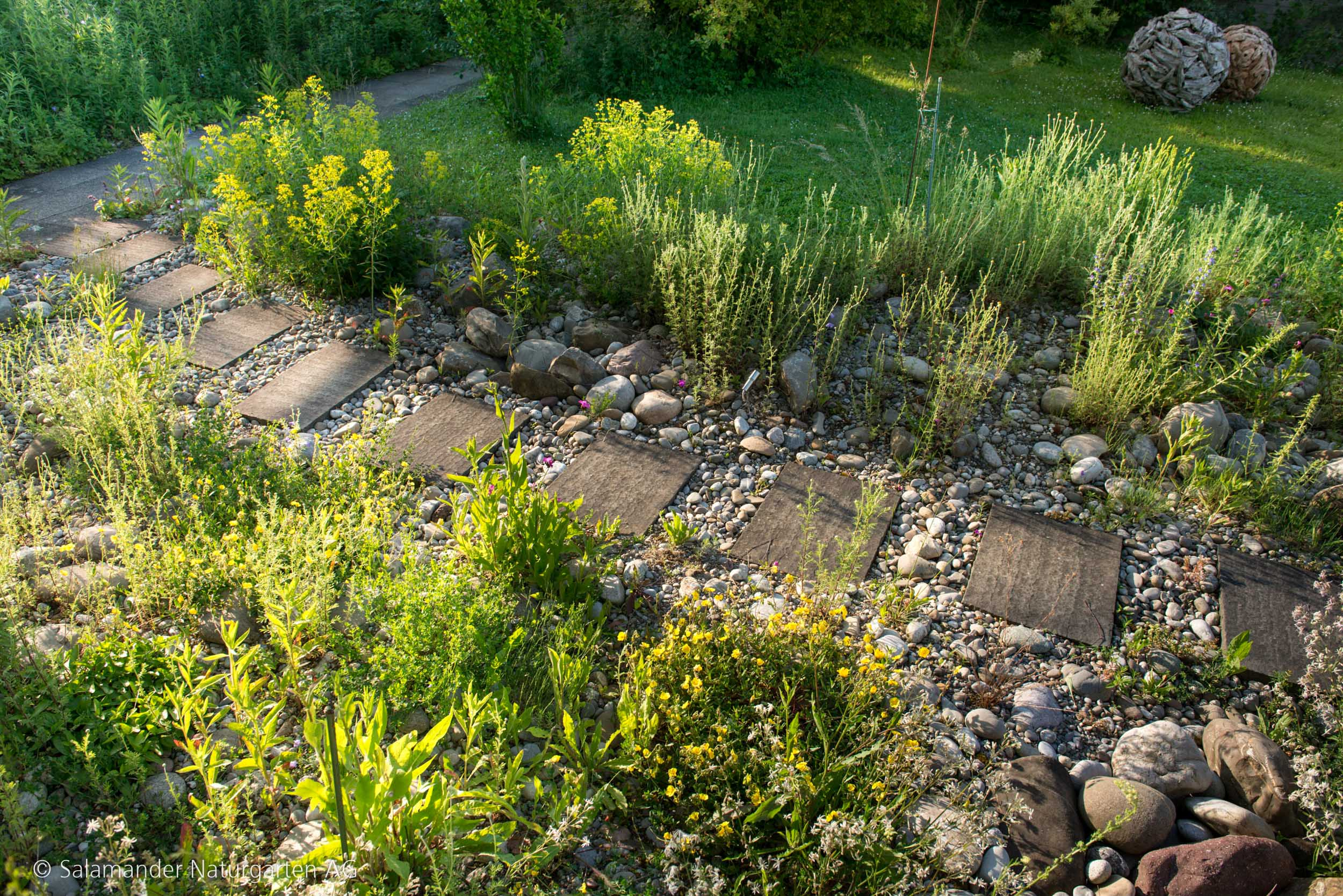 Kräuter und Steinplatten