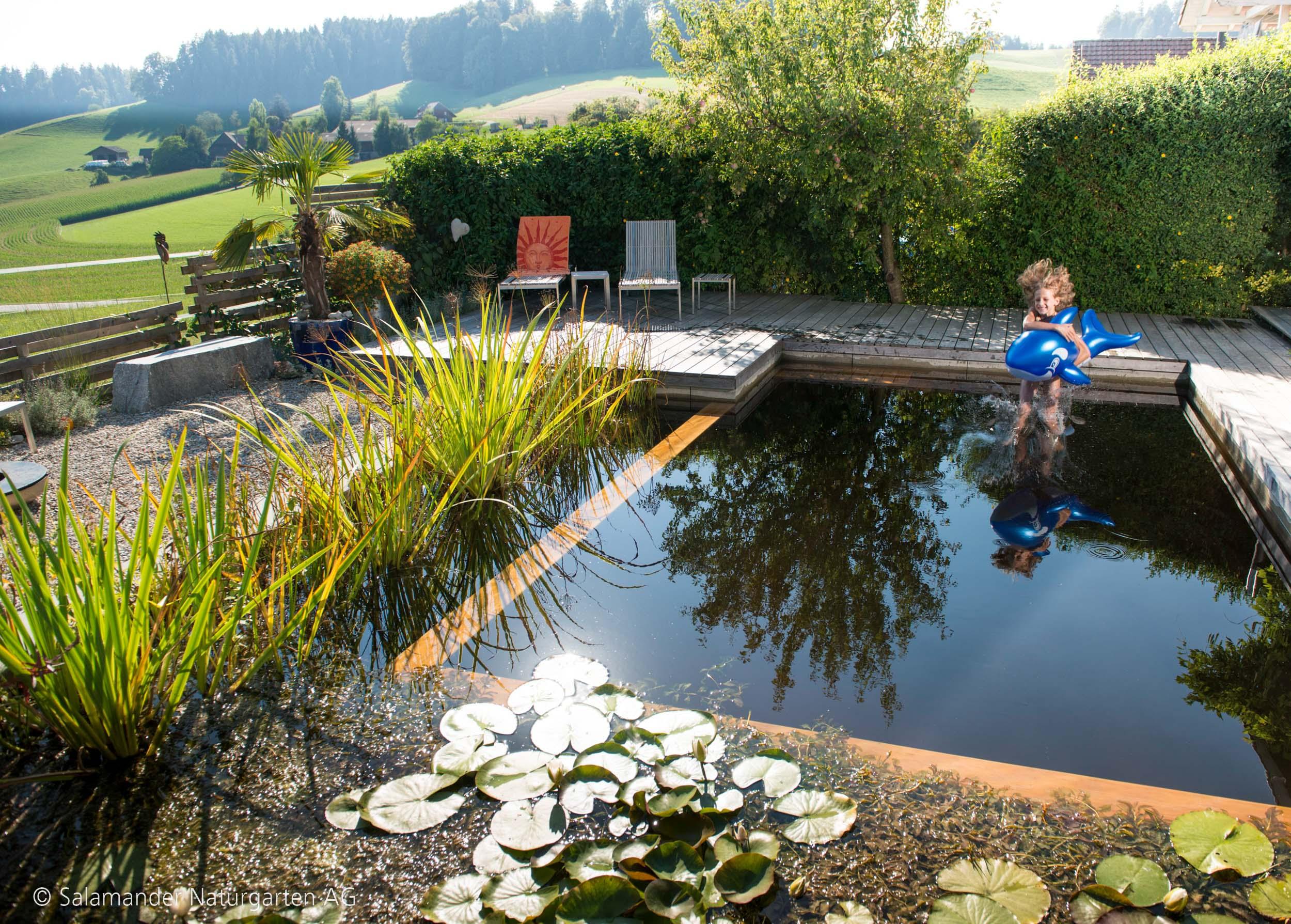 wo wasser ist da kommen auch die tiere salamander naturgarten ag. Black Bedroom Furniture Sets. Home Design Ideas