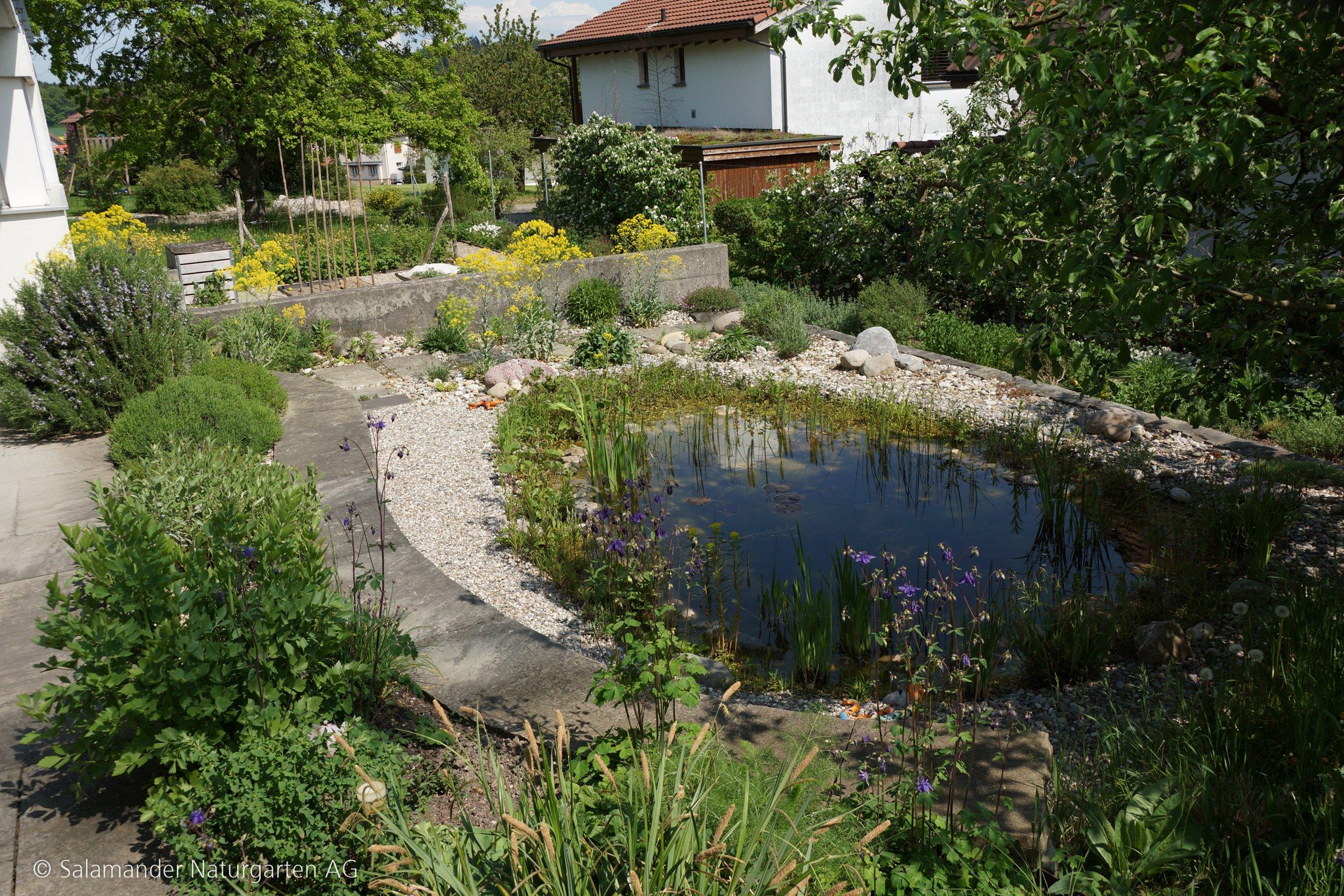 Kleinstrukturen Für Fledermäuse Salamander Naturgarten Ag