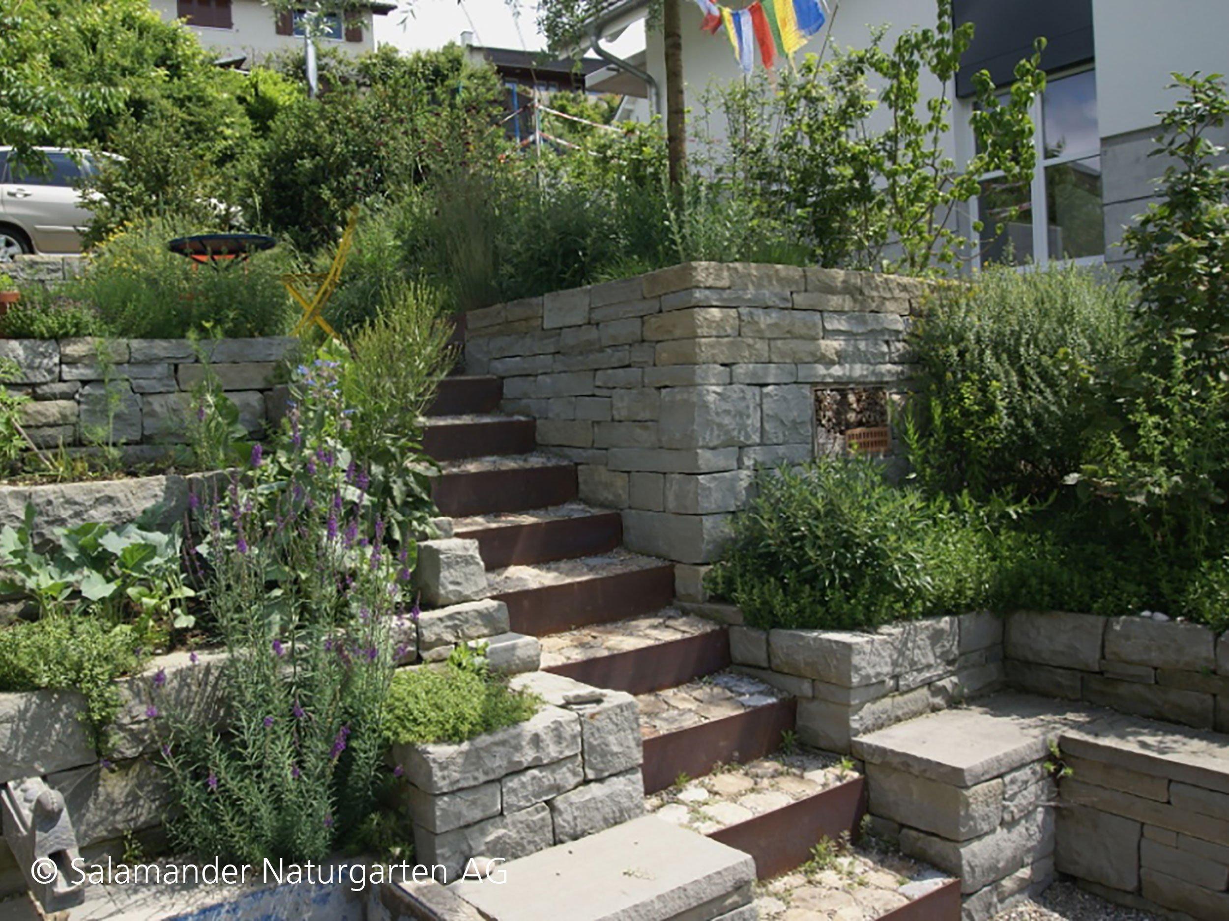 Trockenmauern in der gartengestaltung salamander naturgarten ag - Gartengestaltung mit sandstein ...