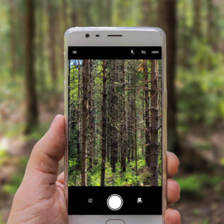 Apps für Pflanzen