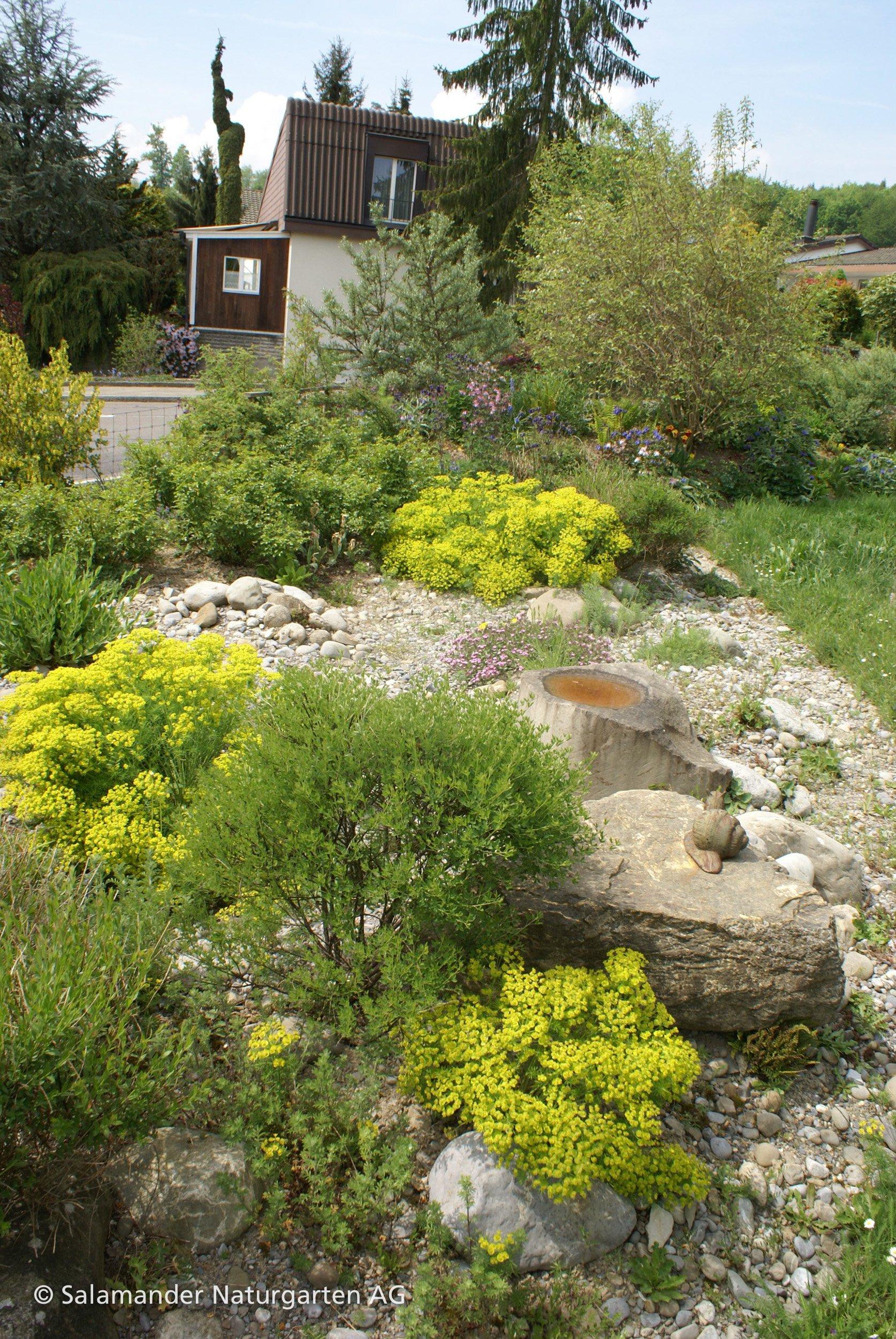 Wasserstelle Im Garten wassernischen auf kleinstem raum einige beispiele für garten