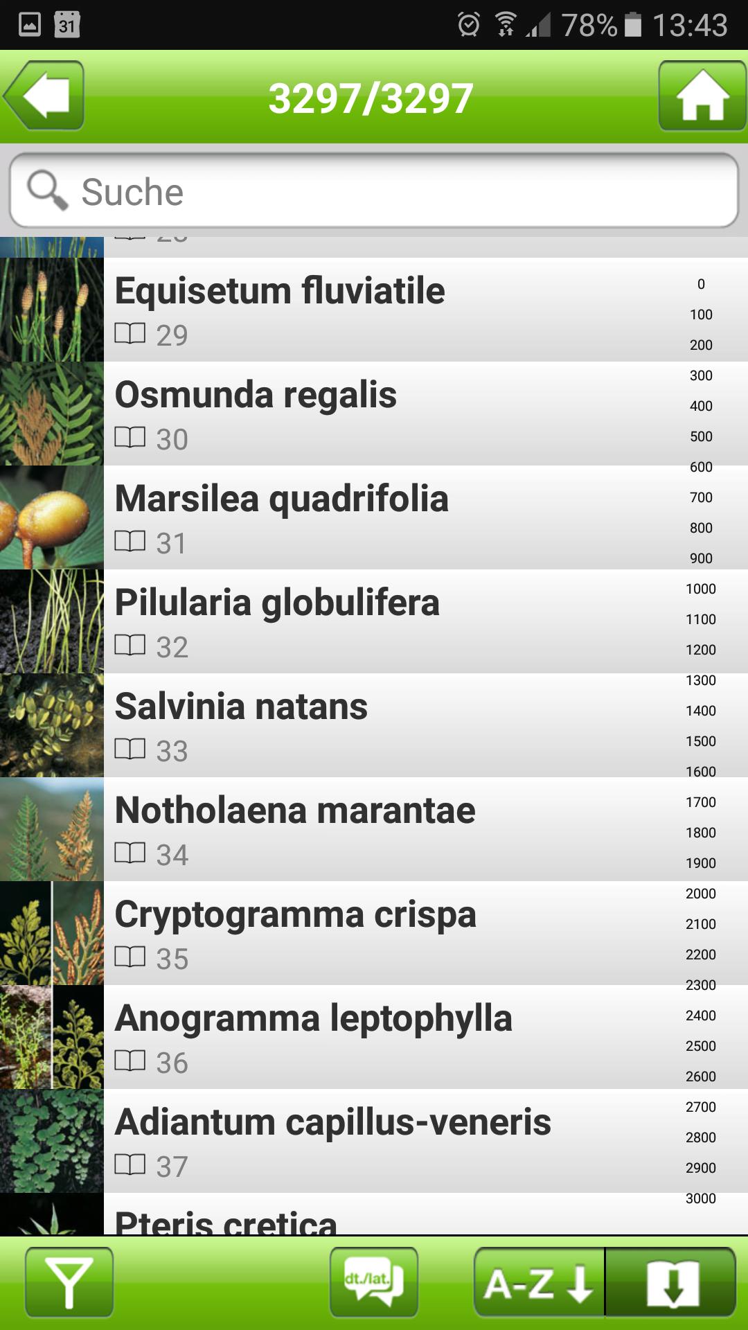 Vollständige Artenliste der Wildpflanzen