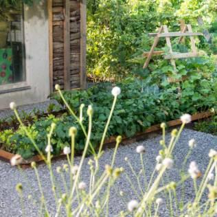 Mit der richtigen Bodenpflege zum Wunschgarten