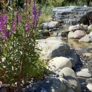 Bau-Bericht Bachlauf im Garten