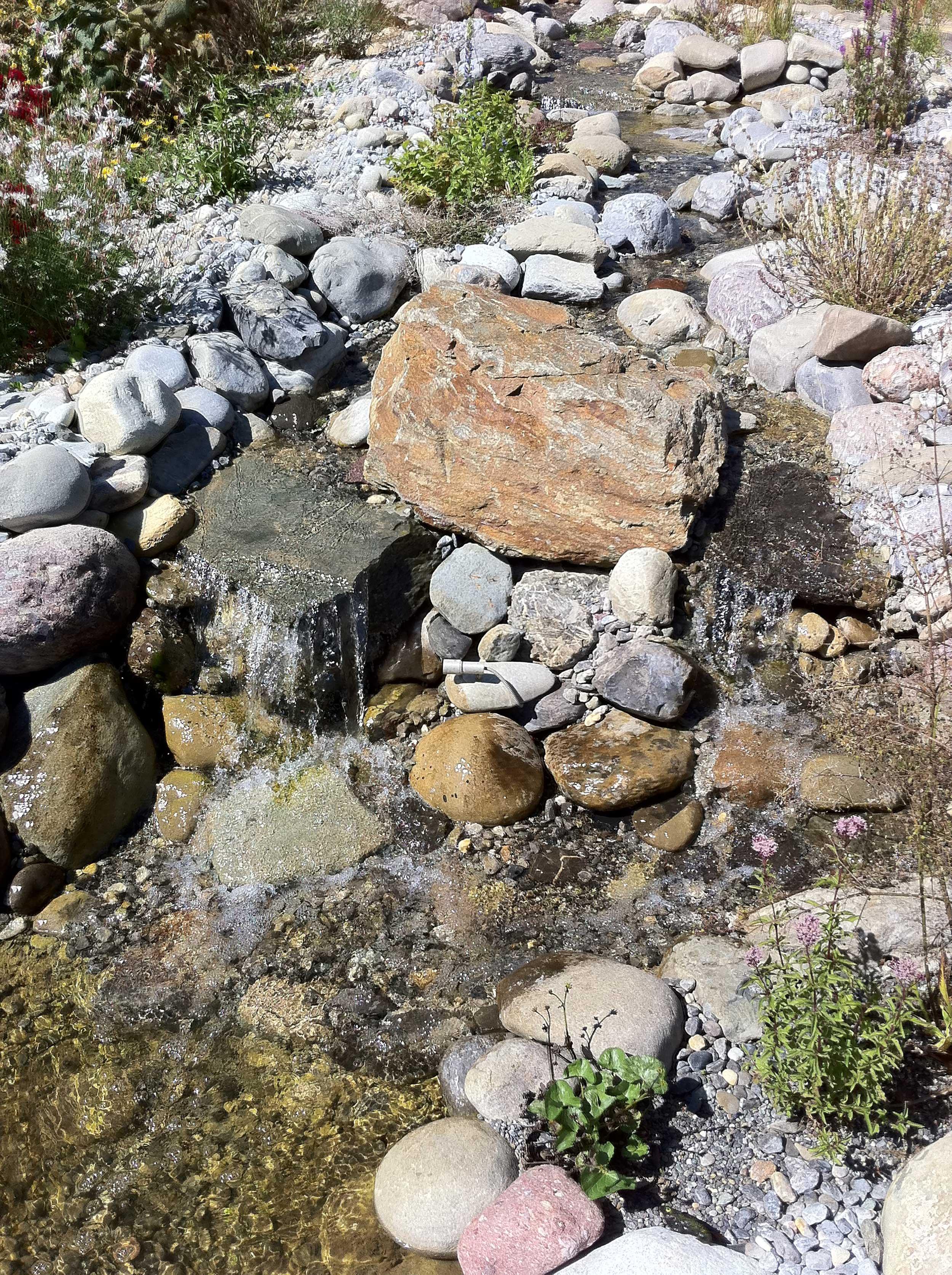 Gemeinsame Bau-Bericht Bachlauf im Garten - Salamander Naturgarten AG #AY_75