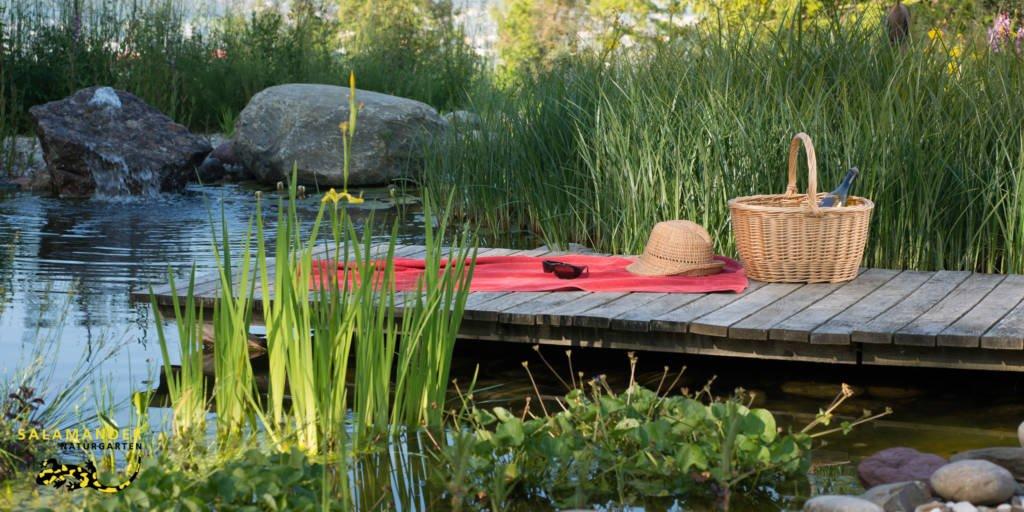 Schwimmteich mit Holzsteg Badeteich