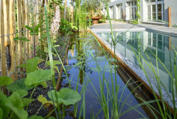 Salamander Showgarten Biopool Filterzone