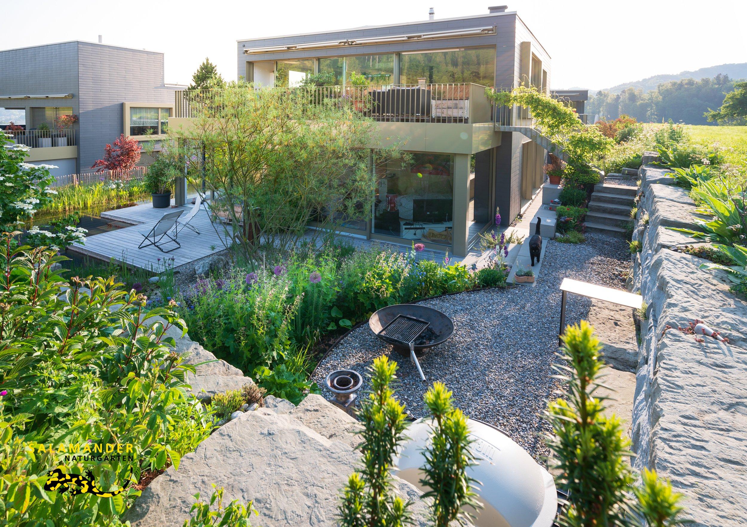 Pflanzen Origineller Sichtschutz Garten