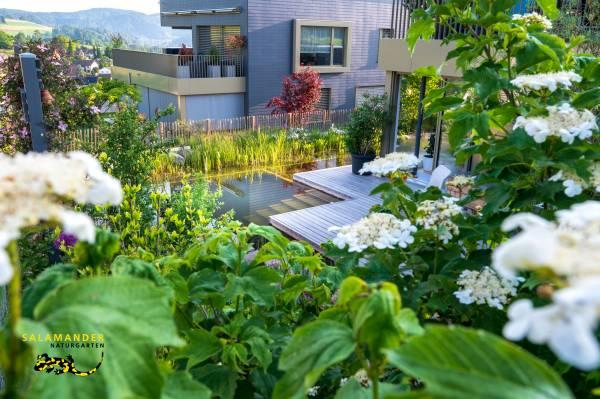Garten auf Augenhöhe, üppige Bepflanzung, Blick auf Schwimmteich mit Holzdeck