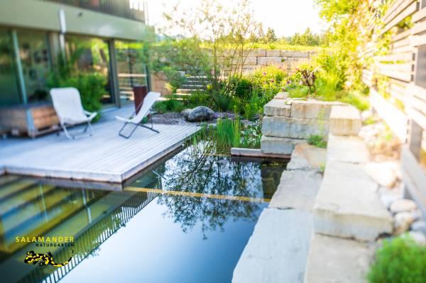Garten auf Augenhöhe, Schwimmteich