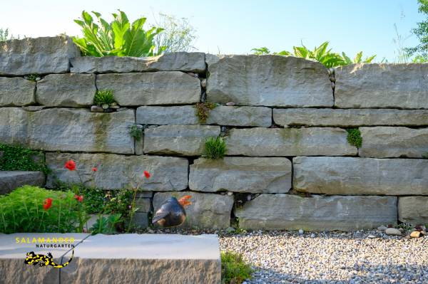 Garten auf Augenhöhe, Trockenmauer