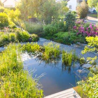 Bilderbuch-Naturgarten mit Schwimmteich