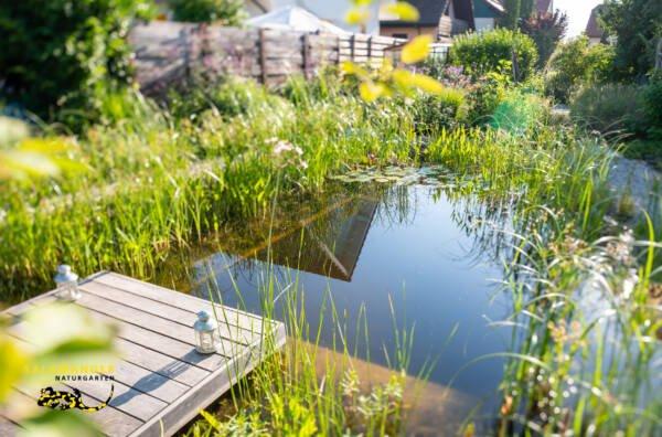 Bilderbuch-Naturgarten mit Schwimmteich und Holzdeck