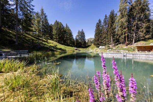 Badesee in Ftan Graubünden Unterengadin Lai da Padnal