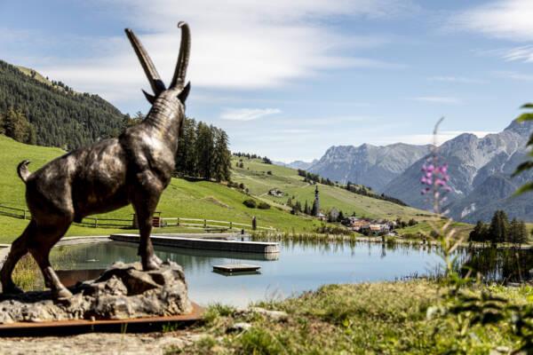 Badesee in Ftan Graubünden Unterengadin Lai da Padnal Steinbock Bergpanorama
